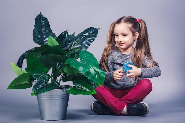 Petite fille mignonne dans le rôle d'un jardinier avec des ciseaux. plante d'intérieur de taille enfant.