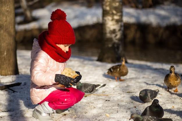 Petite fille nourrir les canards en hiver