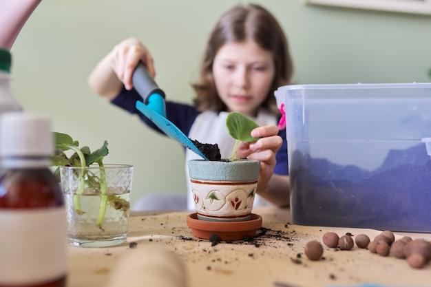 Petite fille plante feuille de saintpaulia jeune plante en pot. utilise spatule, arrosoir, sol. nouvelle plante dans la maison, soins, passe-temps, plante d'intérieur, amis en pot, concept d'enfants