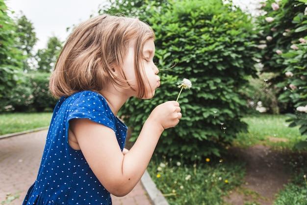 Petite fille souffle pissenlit, fleur, branches de brousse, verdure, enfance, été, communication, rire et jouer
