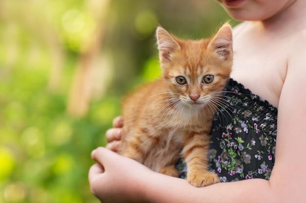 Petite fille tenant un chat