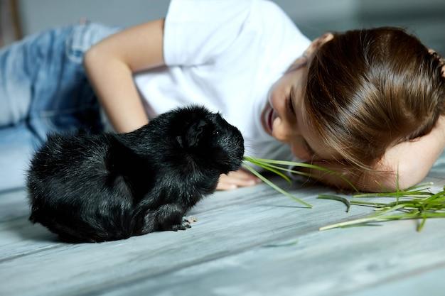 Petite fille tenant et nourrissant le cochon d'inde noir, animal domestique. les enfants nourrissent les animaux caverneux, voyage au zoo ou à la ferme, s'occupent des animaux domestiques. restez en quarantaine à la maison.
