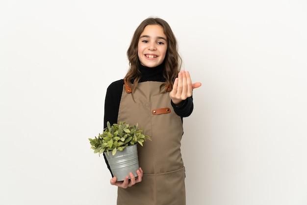 Petite fille tenant une plante isolée sur fond blanc invitant à venir avec la main. heureux que tu sois venu