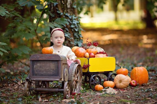 Petite fille en tracteur avec un chariot avec des citrouilles