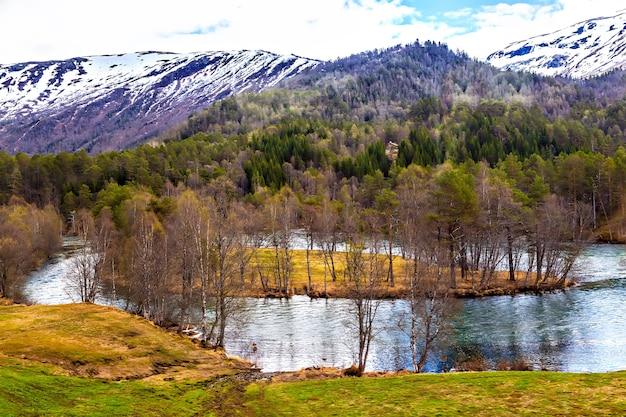 Une petite île au milieu de la rivière rapide, automne