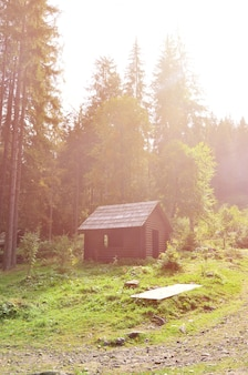 Petite maison naturelle en bois. le bâtiment est situé dans la forêt