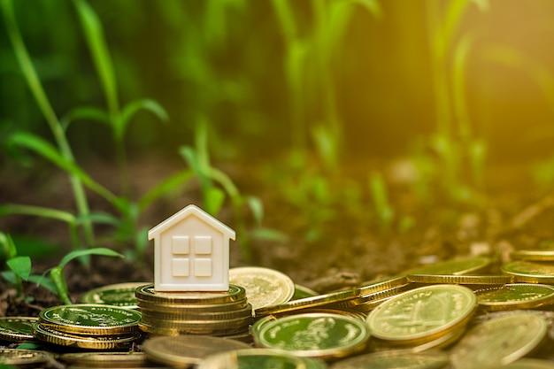 Petite maison sur une pile de pièces d'or dans le jardin