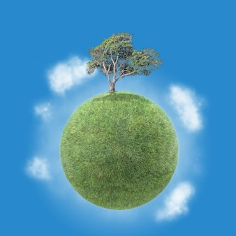 Petite planète avec un arbre