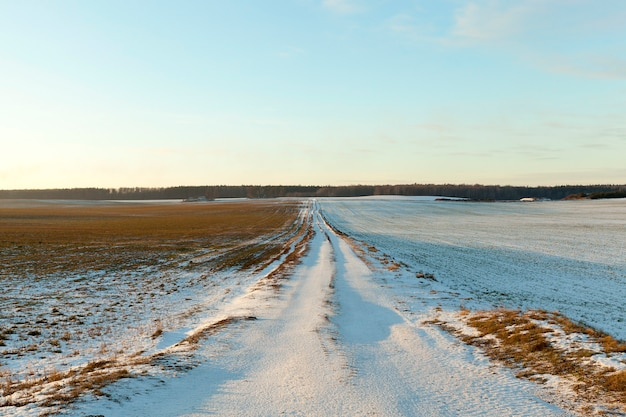 Petite route rurale couverte de neige en hiver
