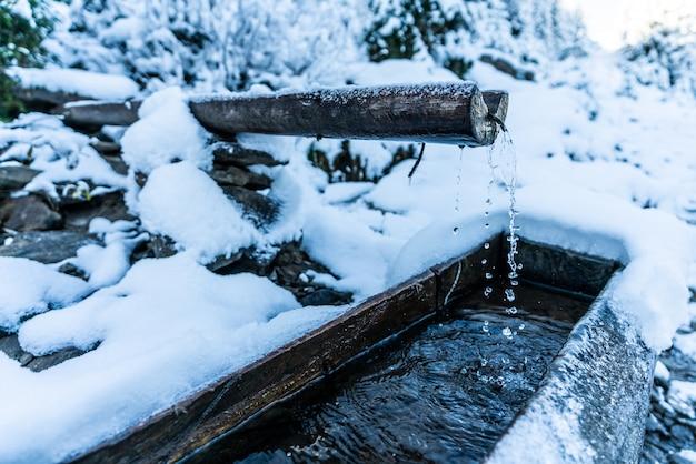 Une petite source rapide avec de l'eau transparente fraîche et propre parmi la neige abondante et la forêt sombre dans les pittoresques montagnes des carpates