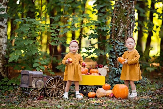 Petites filles jumelles à côté du tracteur avec des citrouilles