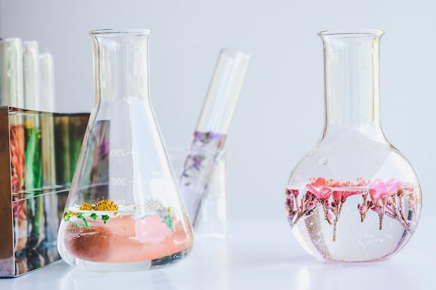 Petites plantes dans des éprouvettes pour la recherche en médecine biotechnologique.