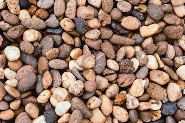 Petites roches ou texture de pierre.