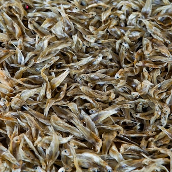 Petits anchois séchés poissons célèbres fruits de mer thaïlande