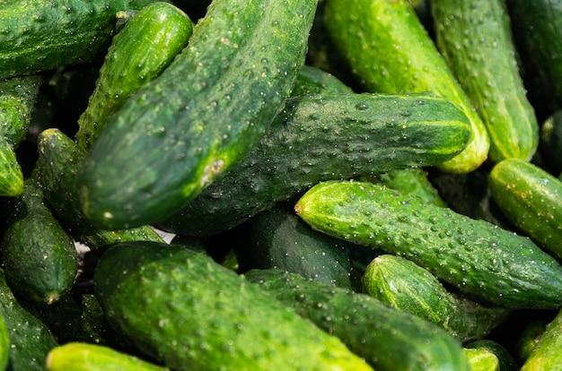 Des petits et des gros légumes verts fraîchement récoltés dans des boîtes en papier, sur les étagères des marchés de l'agriculteur. peut être utilisé comme toile de fond dans les domaines de l'agriculture ou du marché alimentaire