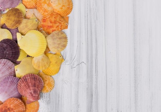 Pétoncle coloré design plat sur fond en bois blanc vintage, vue de dessus