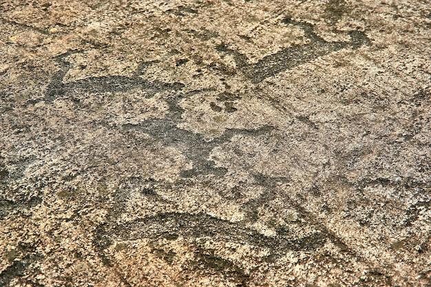 Pétroglyphes de la mer blanche à zalavruga. russie, carélie, zalavruga