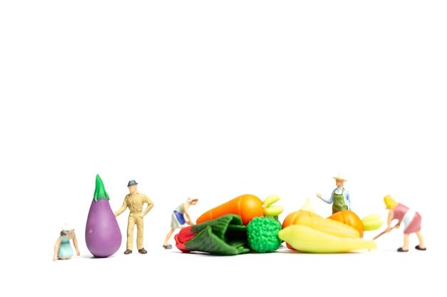 Peuple miniature: jardiniers récolter un légume sur fond blanc, concept de l'agriculture