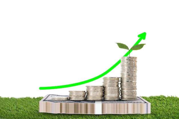 Peut verser avec de l'argent en croissance pour économiser votre budget.