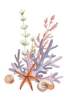 Phare méduse étoile de mer coraux coquillages plage aquarelle