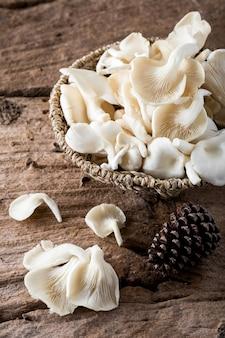 Phoenix mushroom sur fond en bois