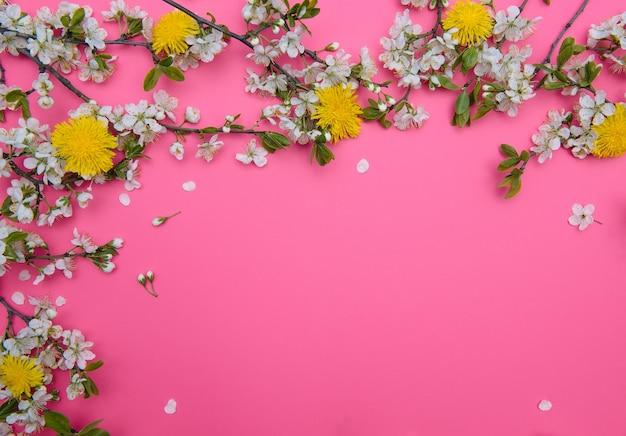 Photo d'arbre de fleurs de cerisier blanc au printemps sur une surface rose pastel