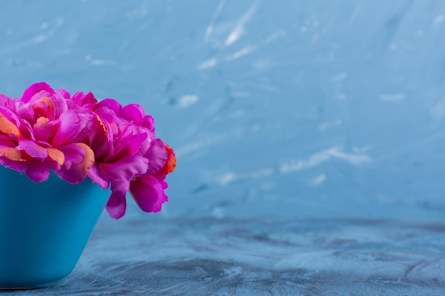 Photo de belles fleurs violettes dans un vase sur bleu.
