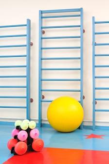 Photo d'équipement sportif pour la salle de sport, yoga et mise en forme, haltères et balles de fitness de différentes couleurs
