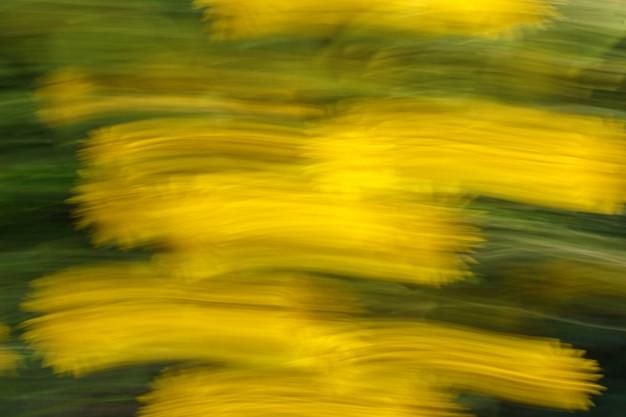Photo floue de fleurs avec effet de mouvement et de traînées comme arrière-plan ou texture.