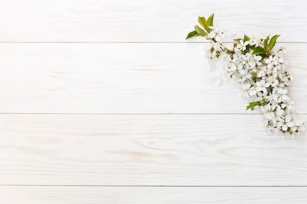 Photo en gros plan de belles branches blanches de cerisier en fleurs.
