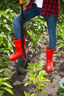 Photo gros plan d'une jeune femme en bottes wellington rouges travaillant sur un lit de jardin avec une pelle