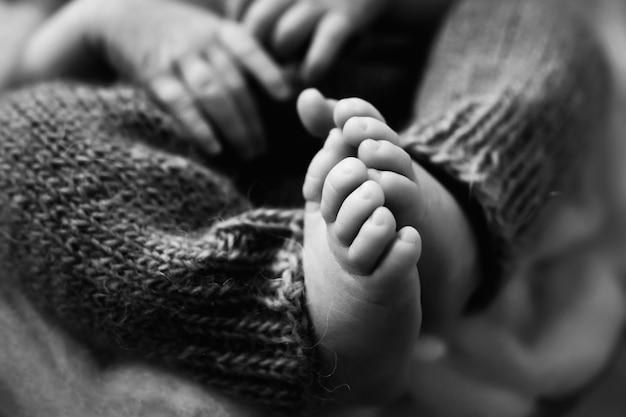 Photo des jambes d'un nouveau-né. pieds de bébé recouverts de fond isolé de laine. photo de haute qualité