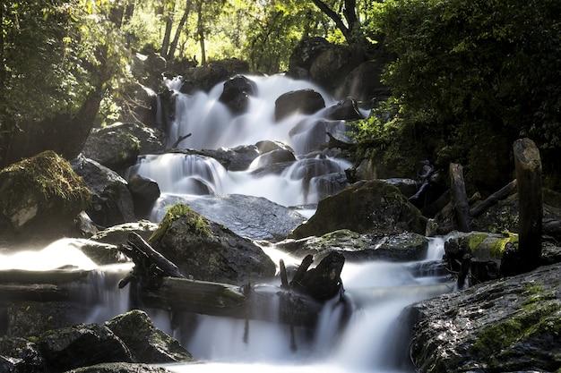 Photo longue exposition de la cascade entourée d'arbres