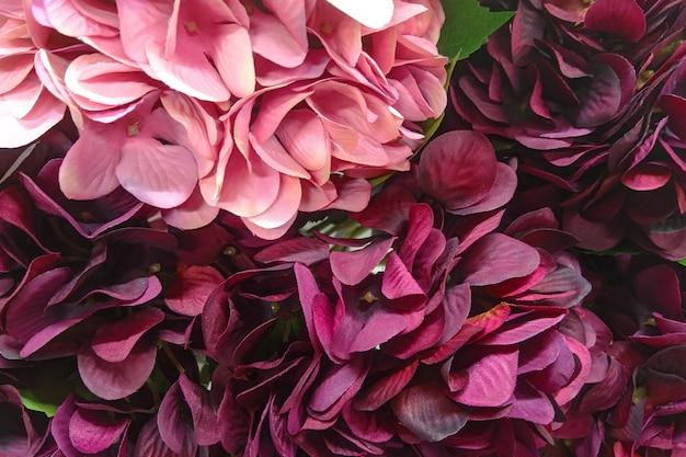 Photo macro de pétales de fleurs, de texture et d'espace.