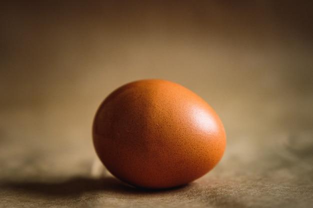 Photo d'un œuf de poule marron sur fond marron.