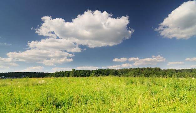 Photo panoramique du ciel