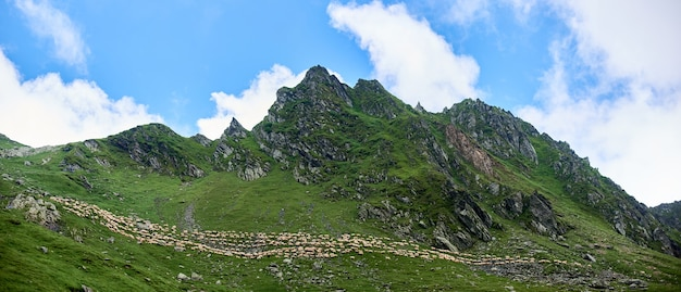 Photo panoramique de magnifiques montagnes et pentes rocheuses vertes