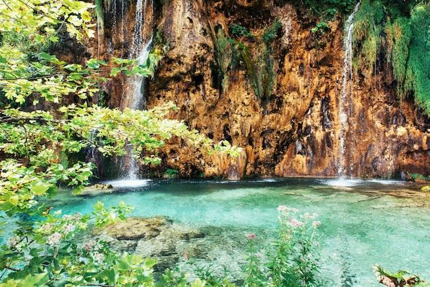 Une photo de poissons nageant dans un lac, prise dans le parc national de plitvice en croatie.
