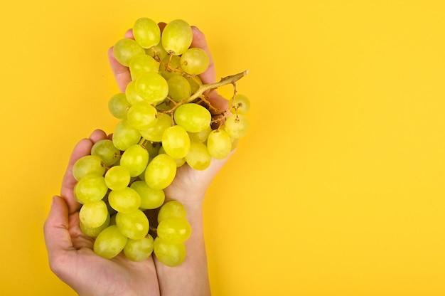 Photo de raisin vert. raisins volumétriques. une grappe de raisin vert.