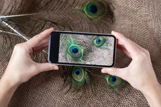 Photo recadrée de l'homme tenant le meilleur smartphone tenant la photo de plumes de paon.