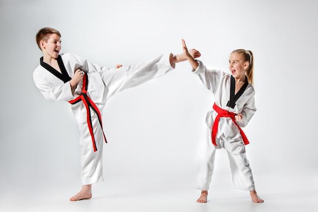 La photo en studio d'un groupe d'enfants s'entraînant aux arts martiaux de karaté