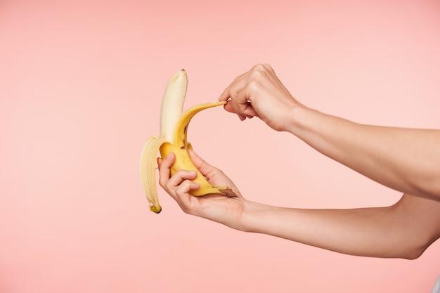 Photo de studio de mains de femme élégante tenant la banane tout en l'épluchant et en allant mordre, prenant un petit-déjeuner sain tout en étant isolé sur fond rose