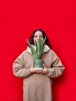 Une photo verticale d'une belle femme tenant un pot avec des plantes de serpent sur mur rouge