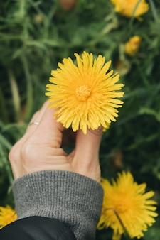 Photo verticale d'une jeune fille tenant un pissenlit jaune
