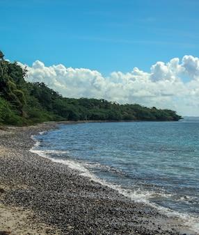 Photo verticale d'une plage de galets entourée de forêt à porto rico