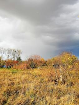 Photo verticale d'une prairie sous un ciel nuageux au cours de l'automne en pologne