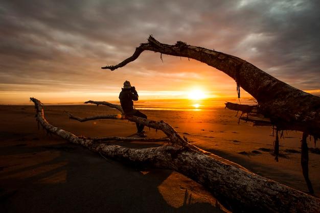 Photographe sur une branche avec vue sur le coucher du soleil