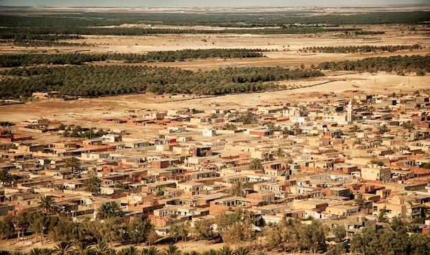 Photographie aérienne de dunes de sable et d'arbres dans une oasis dans le désert du sahara