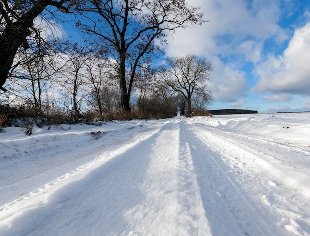 Photographie en gros plan de la neige sur la route. ciel bleu et arbres sans feuilles en hiver