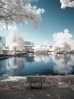 Photographie infrarouge. cabane dans l'eau